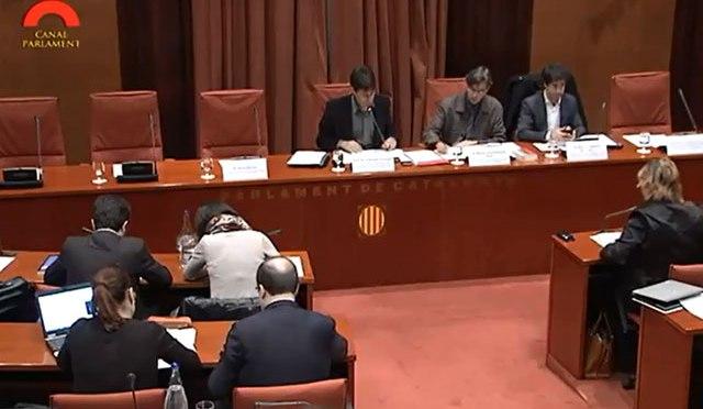Compareixença d'UCFR al Parlament, 21-03-14